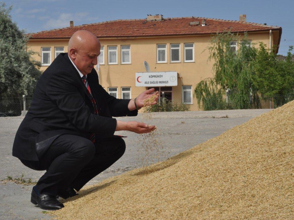 Kırıkkale'de 2019 yılı hasat sezonunun başlaması